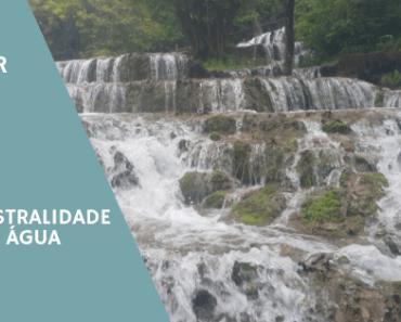 Fluir – A Ancestralidade da Água